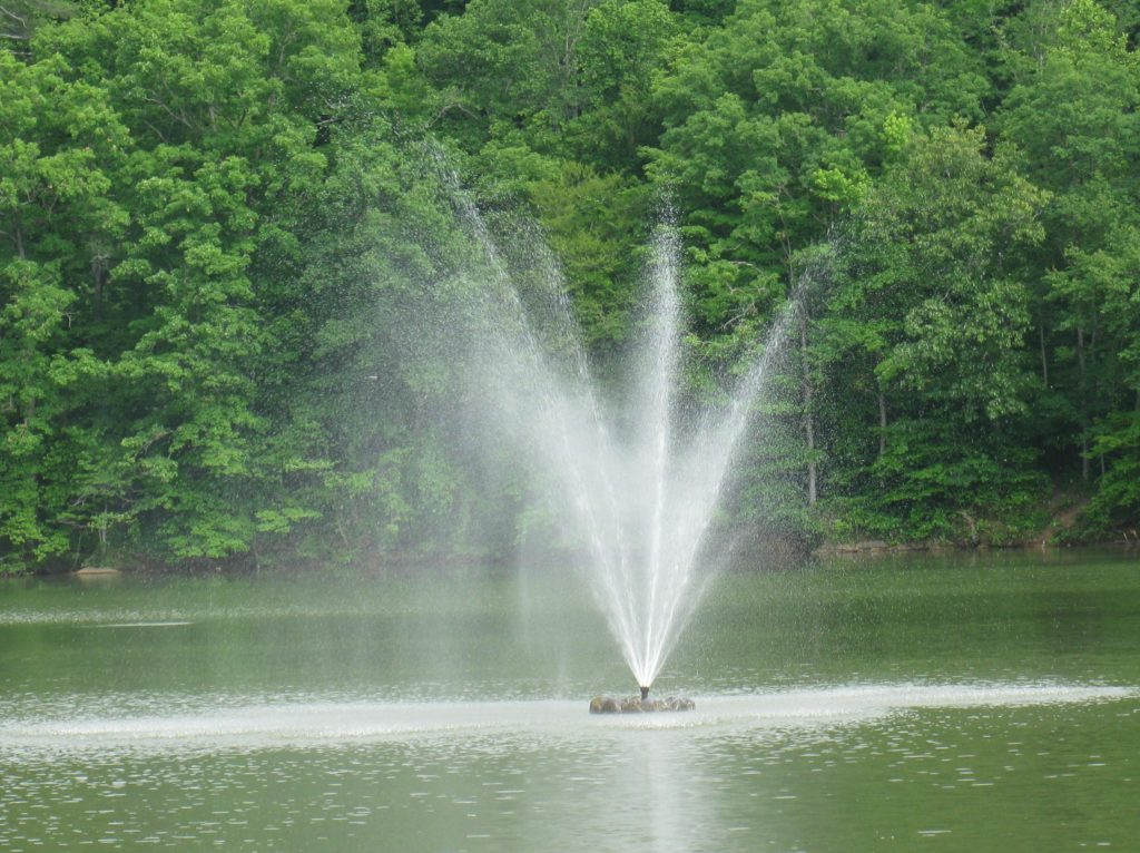 Roane County Parks - Turtles and Fountain